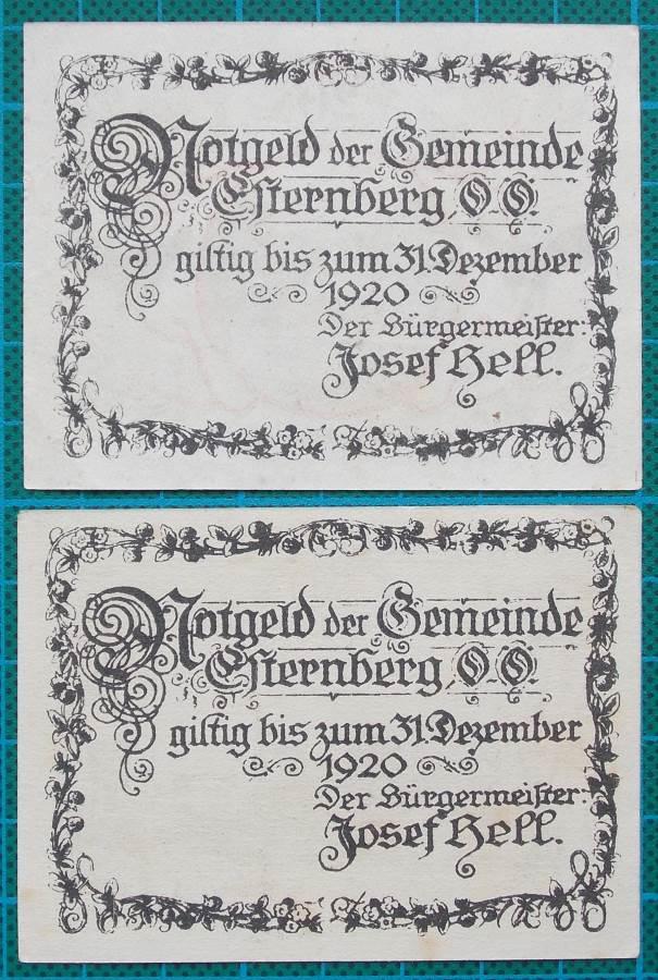 1920 STERNBERG EMERGENCY MONEY BANKNOTES PAIR