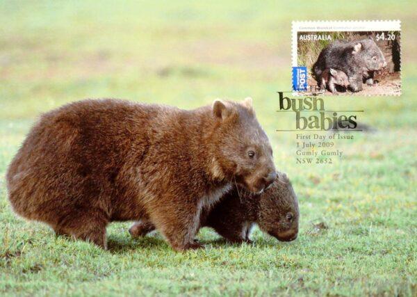 2009 Australia Post Maximum Card - Wombat Bush Babies