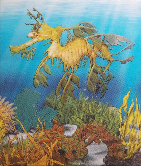 2009 Australian Sea Life The Reef Leafy Sea Dragon
