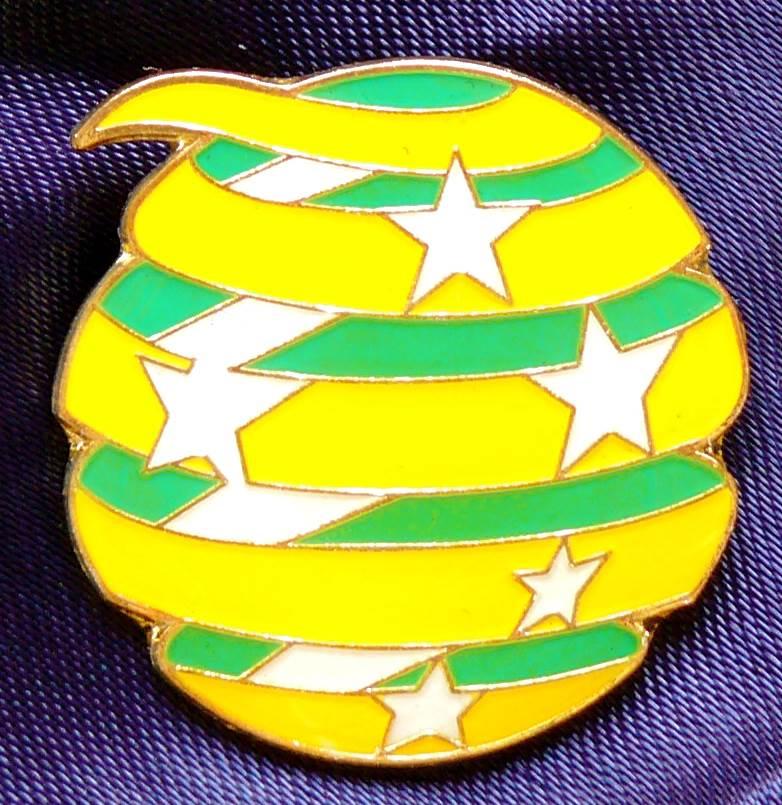 2010 FIFA World Cup Socceroos Team Logo Pin