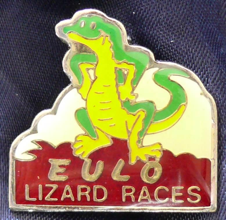 Australia Eulo Lizard Races Metal Pin